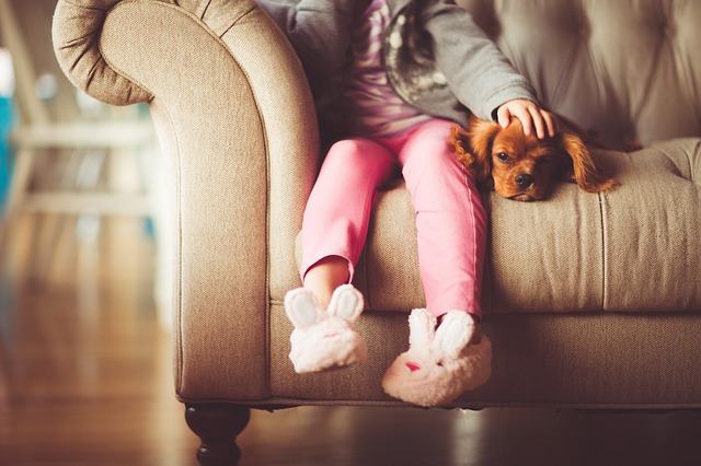 child and dog on couch